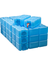29 Water Bricks