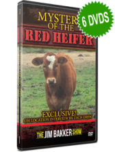 Mystery of the Red Heifer (6 DVDs)