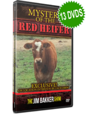 Mystery of the Red Heifer (13 DVDs)