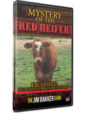 Mystery of the Red Heifer