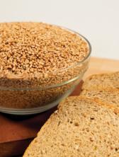 Augason Farms® Hard Red Wheat