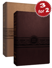 3 for 2 MEV Large Print Bible