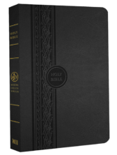MEV Thinline Reference Bible - Black