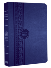 MEV Thinline Reference Bible - Blue