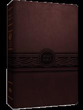 MEV Large Print Bible - Cherry Brown