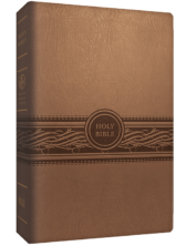 MEV Large Print Bible - Tan