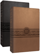 Dad & Grad Special - MEV Large Print Bible