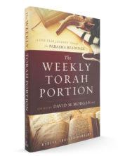 Christmas Giving Rabbi Collection