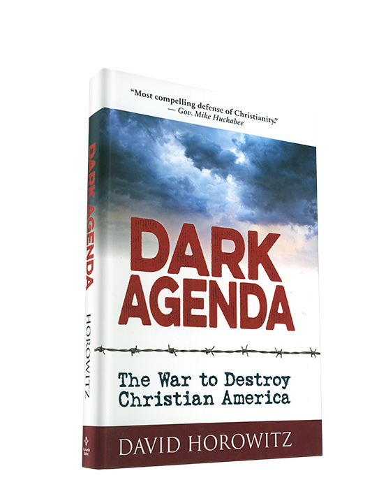 Dark Agenda book by David Horowitz