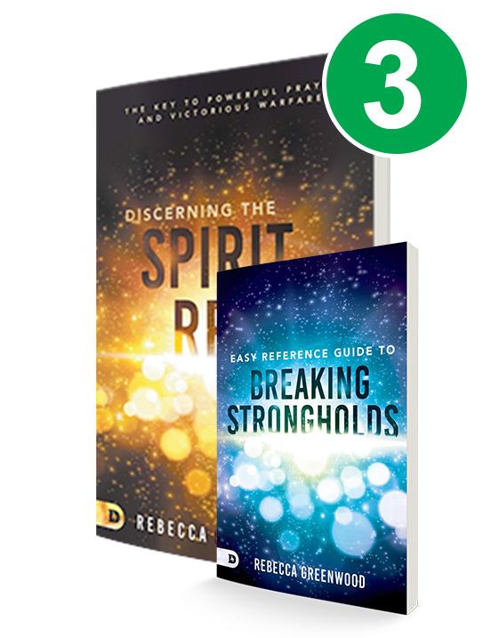Discerning the Spirit Realm 3 Book Offer