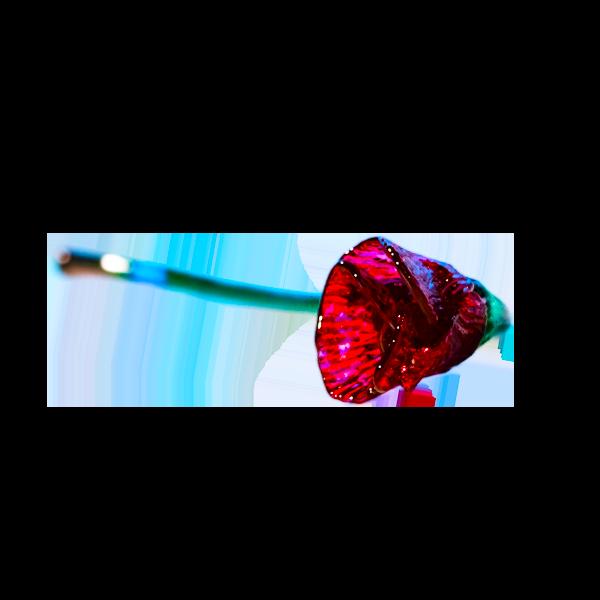 Forte-Flower
