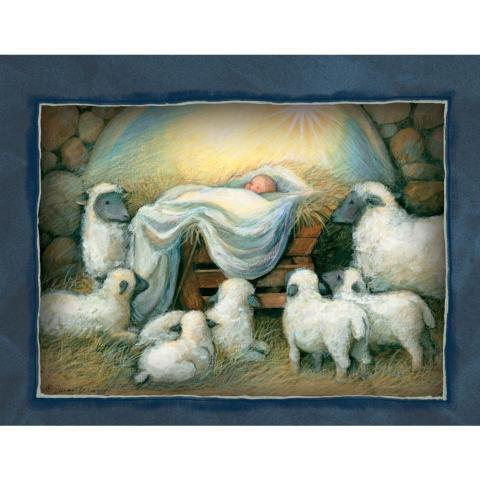 Nativity-Assorted-1
