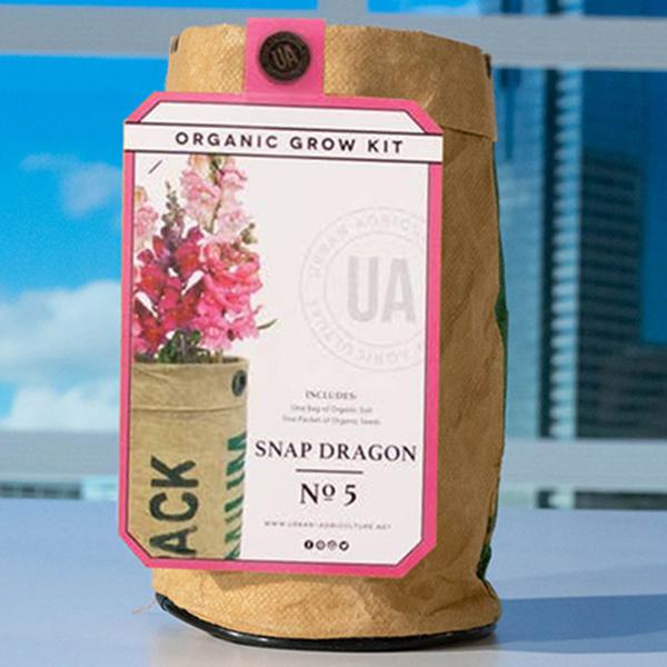 Grow-Kit-Snap-Dragon