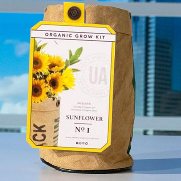 Grow-Kit-Sunflower