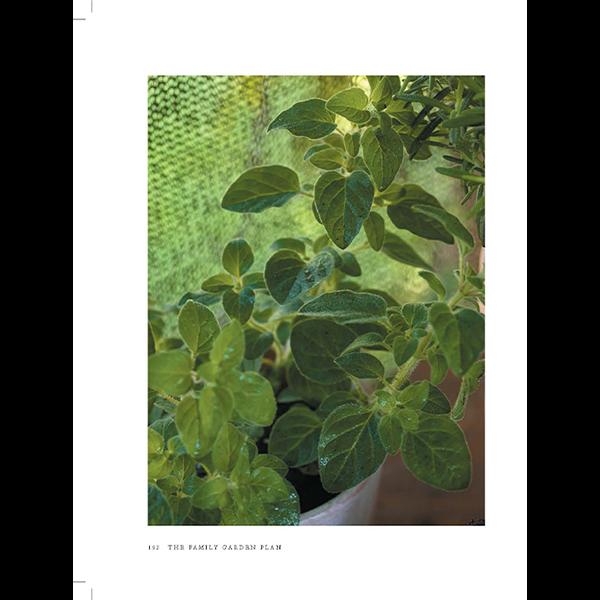 The-Family-Garden-Plan-Book-Page-13
