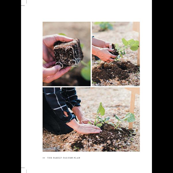 The-Family-Garden-Plan-Book-Page-7