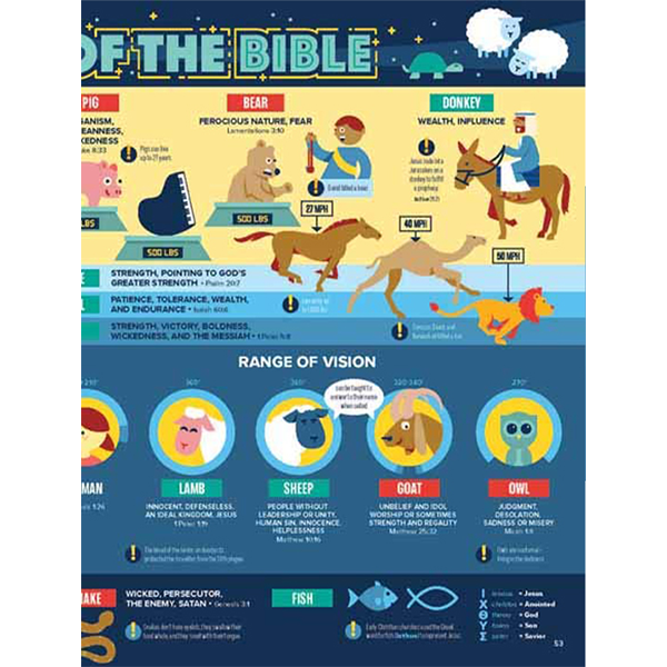 Bible-Infographics-Vol-2-Page-14